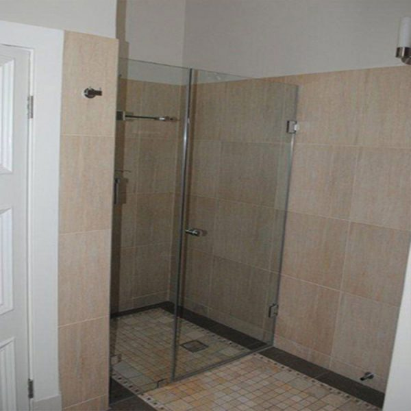 Frameless Hinged Door with In Line Panel